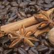 Detail image of coffee beans, cinnamon sticks, sar anise and nut — Stock Photo
