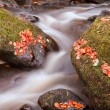 Beautiful waterfall flowing through Autumn Fall vibrant landscap — Stock Photo