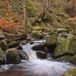 Burbage Brook flowing through Padley Gorge in Peak District — Stock Photo