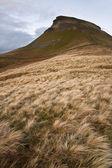 Herbst landschaft pen-y-gent in yorkshire dales-nationalpark — Stockfoto
