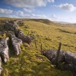 Stock Photo: Limestone rocks and flint walls lead towards Malham Moor in dist