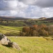Постер, плакат: View of Wharfe Dale from Norber Erratics in Yorkshire Dales Nati