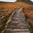 Wooden footpath over marshland leading to Pen-y-Ghent in Yorkshi — Stock Photo
