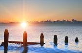 Oude groynes op de laatste defensie strand bij zonsopgang tegen tij — Stockfoto