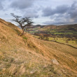 View of Mam Tor from lower heights of Kinder Scout in Peak Distr - Stock Photo