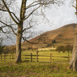 Stock Photo: Autumn Kinder Scout viewed from footpath to Booth in Peak Distri