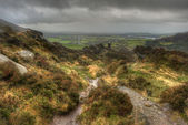 View from Ramshaw Rocks towards The Roaches in Peak District Nat — Stock Photo