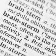 图库照片: Macro image of dictionary definition of brainstorm