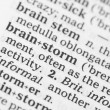 Macro image of dictionary definition of brainstorm — Foto de Stock