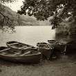 Stock Photo: Sepiretro style picture of derelict boathouse and rowing boats