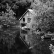 Stock Photo: Black and white retro style picture of derelict boathouse and ro
