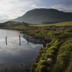 Beautiful sunrise mountain landscape reflected in calm lake — Stock Photo