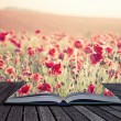 Creative concept pages of book Stunning poppy field landscape un — Stock Photo