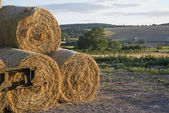 Summer countrysdie landscape of stack of hay bales against rural — Stock Photo