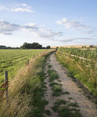 Countryside landscape of track leading through fields on Summer — Stock Photo