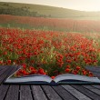 Creative concept pages of book Stunning poppy field landscape un — Stock Photo #31107863