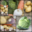 Compilation collage of fresh food with a theme of Winter vegetab — Stock Photo