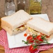 Fresh egg and tomato on white sandwich in rustic kitchen setting — Stock Photo #36031301