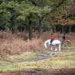 Unidentified horse riders during Autumn in forest landscape — Stock Photo