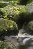 Landscape of Becky Falls waterfall in Dartmoor National Park Eng — Stock Photo