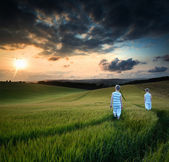 Concept landscape young boys walking through field at sunset in — Stock Photo