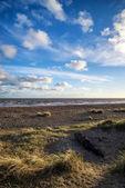 Paesaggio tramonto blu cielo estivo spiaggia — Foto Stock