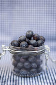 Fresh blueberries falling out of glass jar — Stock Photo