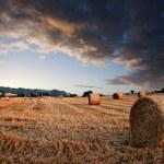 piękne złote godziny bele siana zachód krajobraz — Zdjęcie stockowe