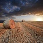 Красивый золотой час тюков сена закат пейзаж — Стоковое фото