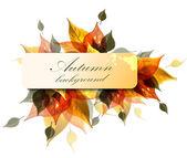Höstens bakgrund — Stockvektor