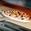Putting pizza in oven at restaurant kitchen — Стоковая фотография