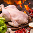 Chicken — Stock Photo #36946911
