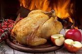 Chicken — Stockfoto