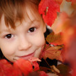 Boy with maple leaves — Stock Photo