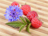 Fresh Ripe Raspberries with Leaf and Blue Flower — Stock Photo