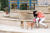 A woman and three dogs — Stock Photo