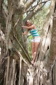 ładna kobieta w drzewo — Zdjęcie stockowe