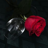 The still-life, rose and nearby lies a glass.2 — Stock Photo