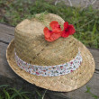 Stock Photo: Summer hat and poppy on railway