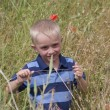 Stock Photo: Little blond boy in dark blue striped T-shirt on poppy field