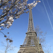 Spring in Paris. Eiffel Tower. — Stock Photo #24930287