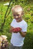 Bonito menino loiro com placa de framboesa — Fotografia Stock