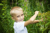 Cute blond boy picking raspberry in summer forest — Stock Photo