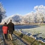 Senior couple walking — Zdjęcie stockowe #36257835