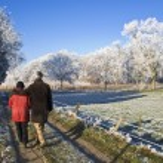 Senior couple walking — Stock fotografie #36257835