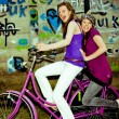 Girls  have fun on a bicycle — Stock Photo