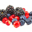 Different fresh berries — Lizenzfreies Foto