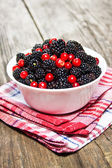 Blackberries and cranberries in a bowl — Stock Photo