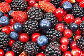 Different fresh berries as background — Stok fotoğraf