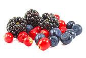 Different fresh berries — Stock Photo